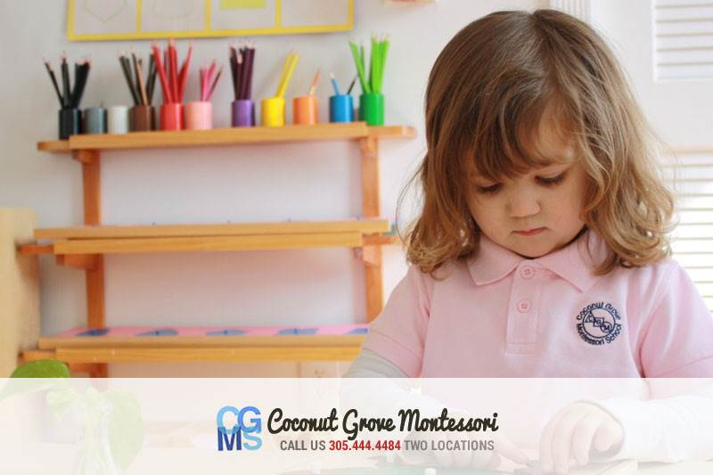 Coconut Grove Montessori