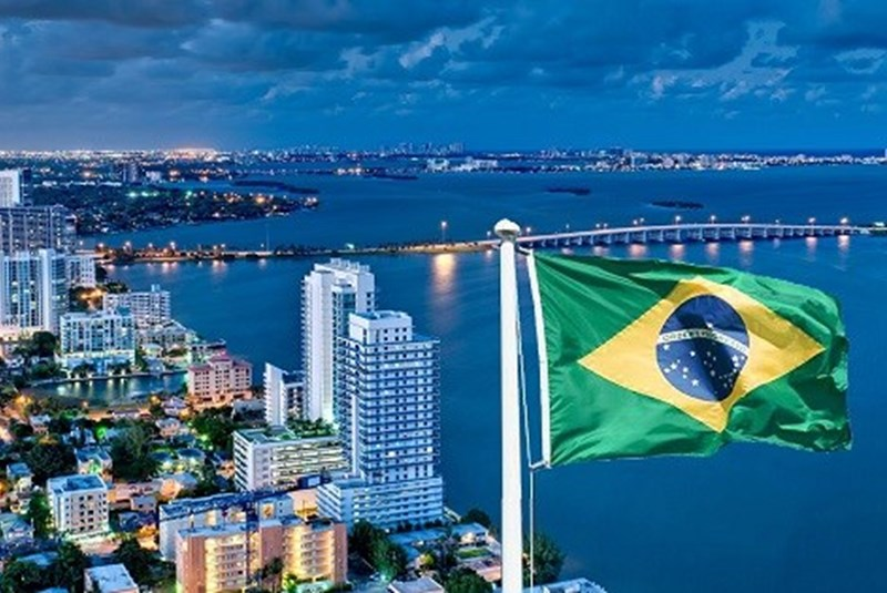 Miami-Brazil Connections in Numbers