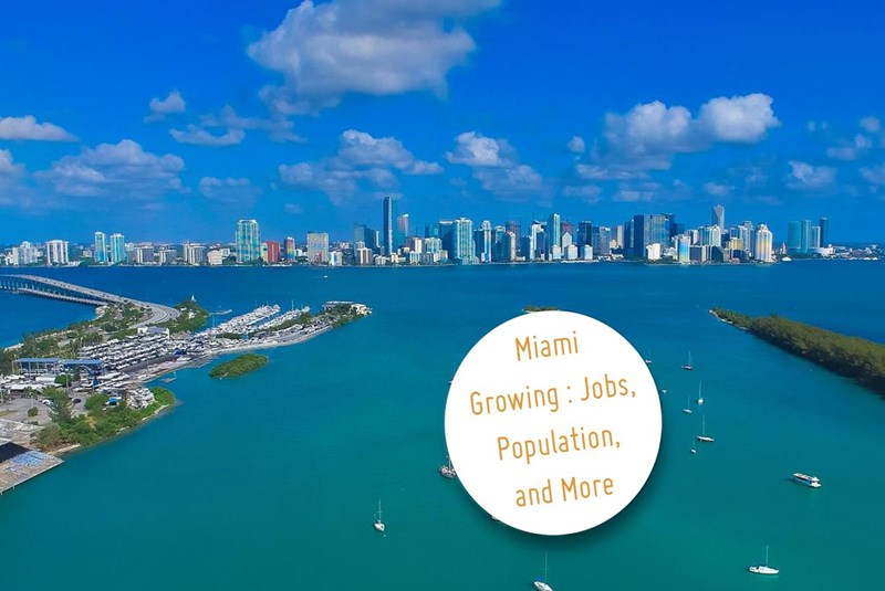 Miami Growing in More Ways than One: Jobs, Population, and More