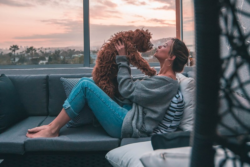 New Emotional Support Animal Law Florida 2020 - What it Means for Landlords and Condo Residents with an ESA Dog or Cat