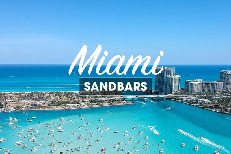 Need to Get Away from It All? Escape to a Miami Sandbar