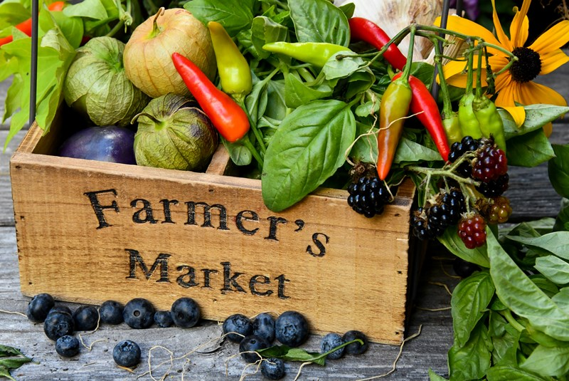 The 5 Must-Visit Miami Farmers' Markets
